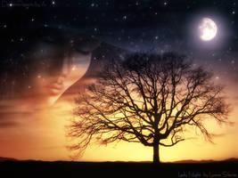Lady Night by luana