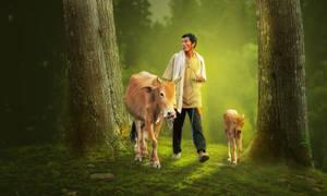 A Farmer by Roshan3312