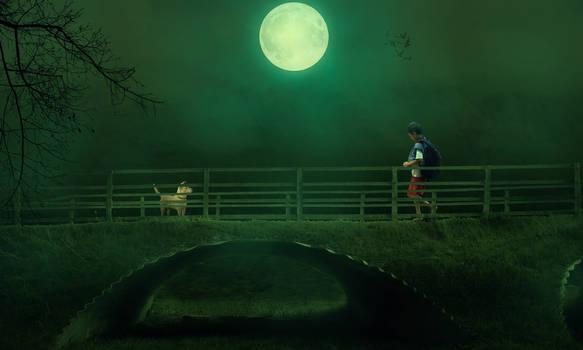 Alone Boy and a Dog  Dramatic Photo
