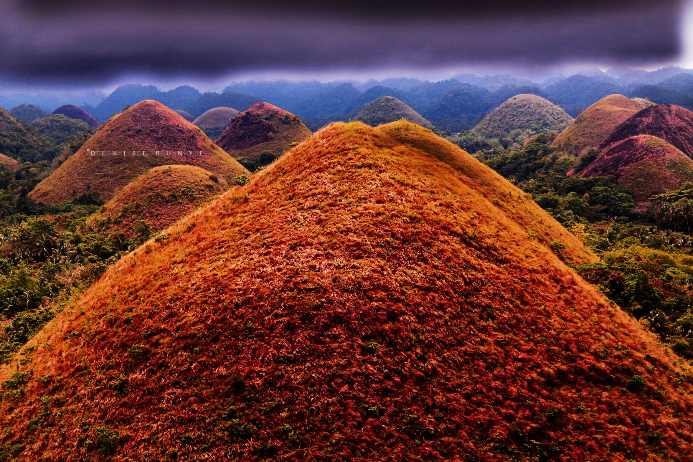 Chocolate_Hills_by_DeniseBunye - Dark Chocolate Hills - Philippine Photo Gallery