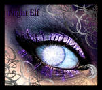 Warcraft Night Elf Eye