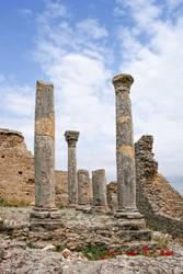 Roman Ruins IV