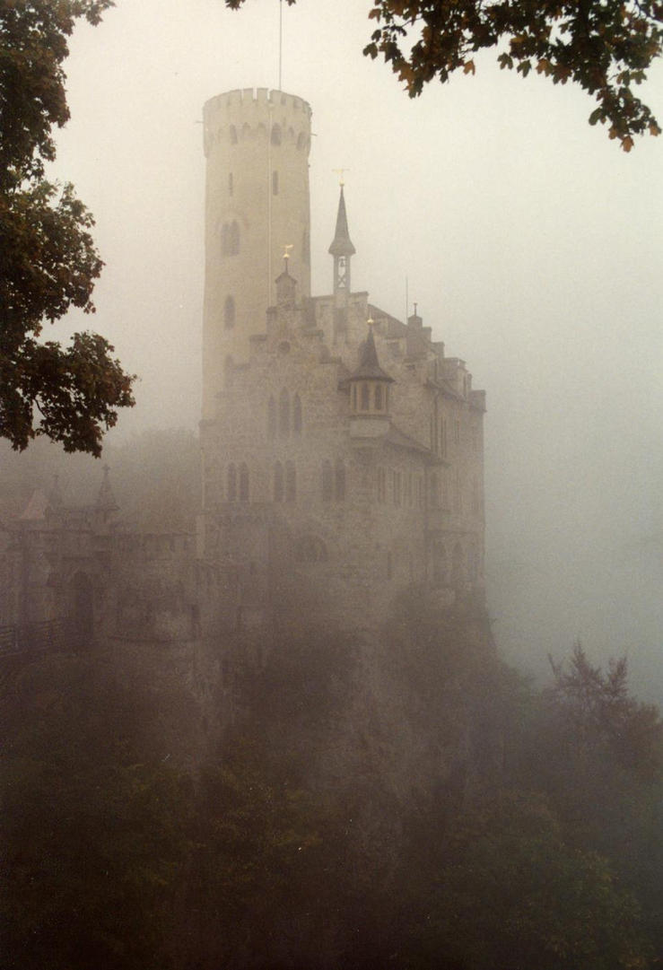 Castle in the fog by dimage