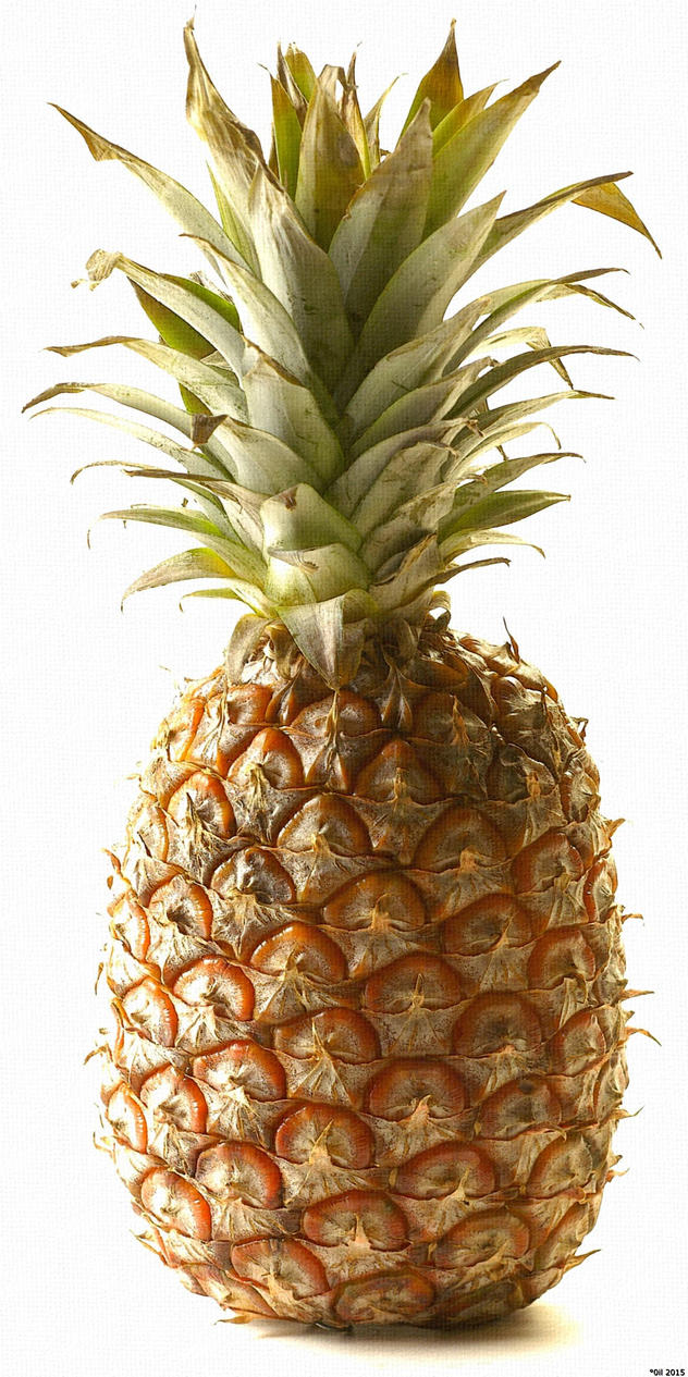 Pineapple by JQuangTrung