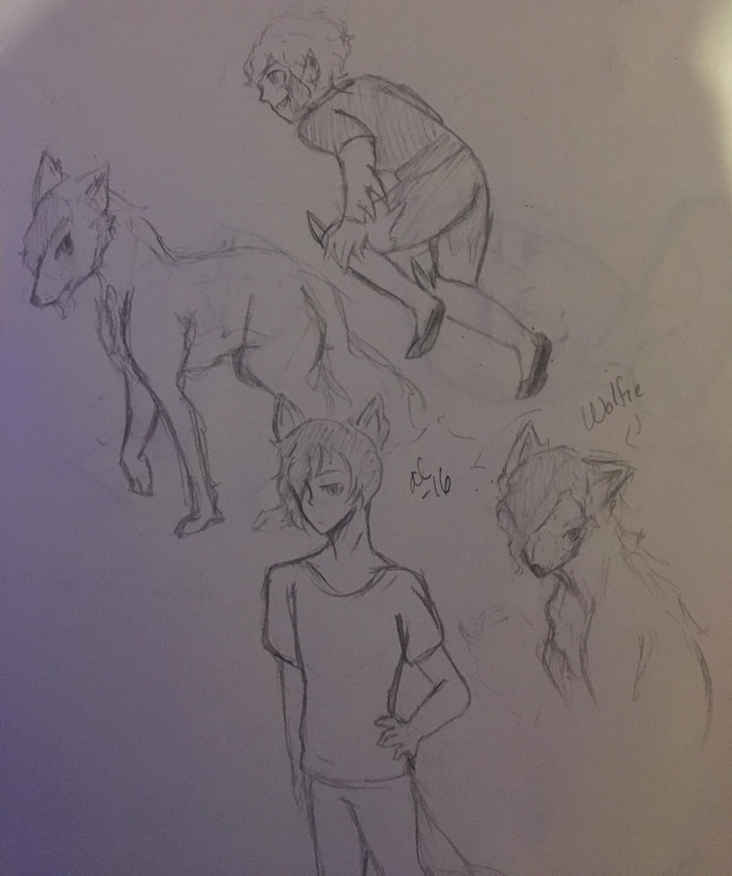 Wolfie Wolf Form and a Liam Jumping  by Ailizerbee08