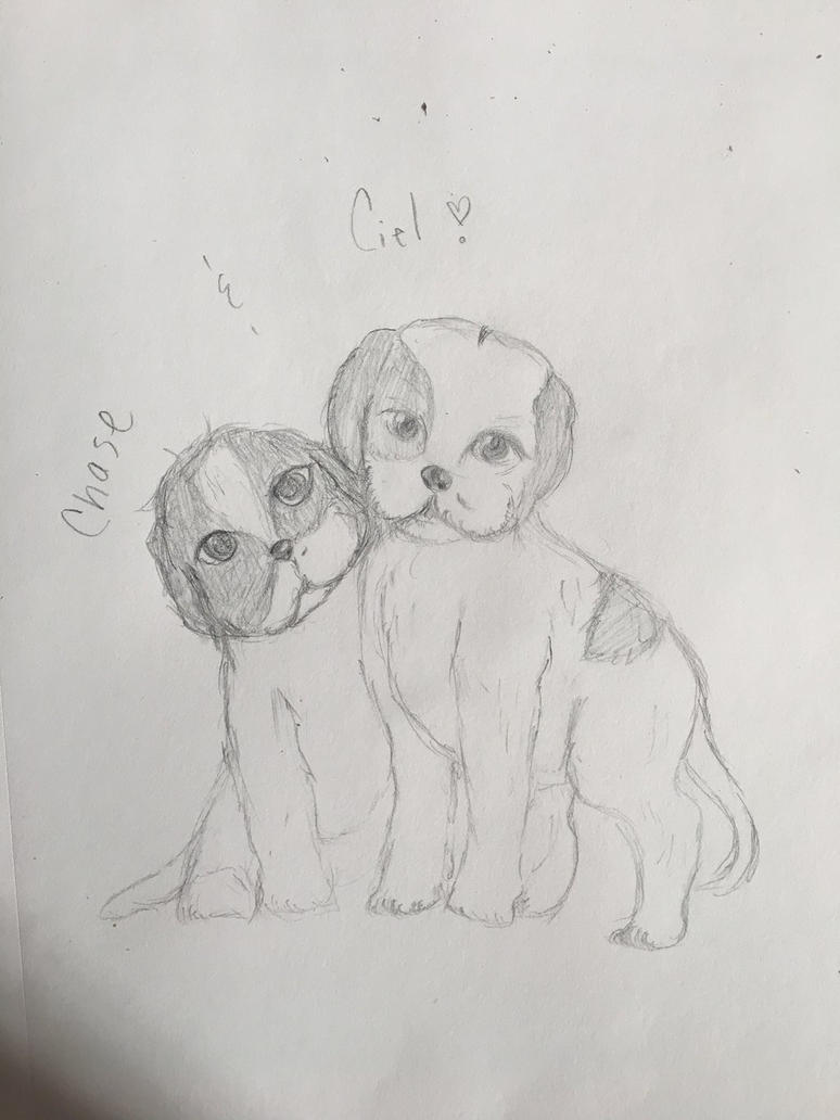 My lil PUPS  by Ailizerbee08