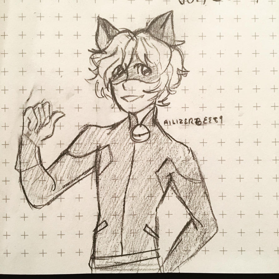 Chat Noir  by Ailizerbee08