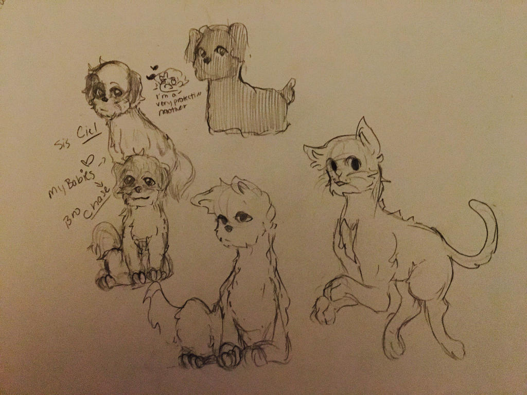 Doggie/cat Doodles  by Ailizerbee08