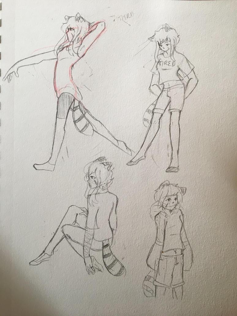 Raccoon Doodles  by Ailizerbee08