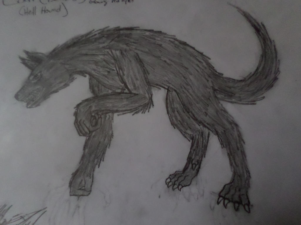 Coal (HellHound) by Katty-Waterbender