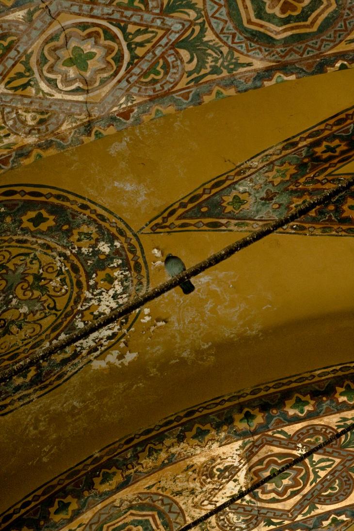 Dove in Hagia Sophia, Istanbul by AnaHRV