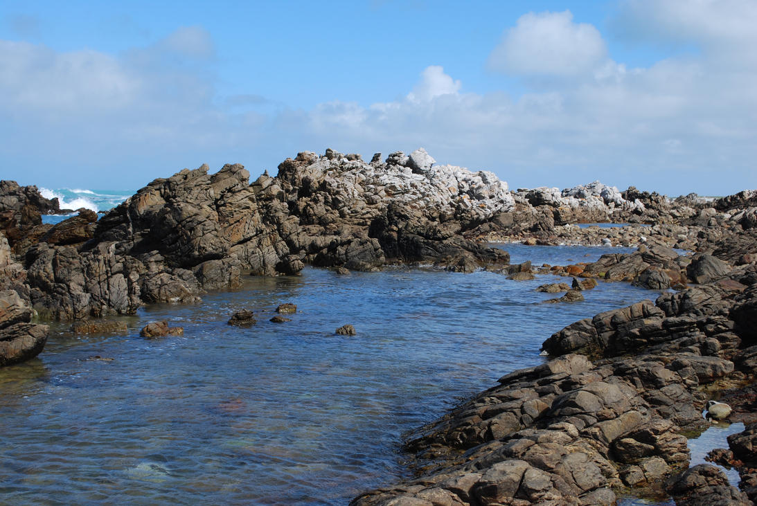 Rocky Tidal Zone 2 by CompassLogicStock