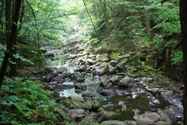 Rocky Creek by CompassLogicStock