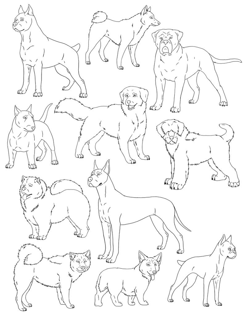 Line Drawing Of Dog : Free dog lines revamp by sabraetrash on deviantart