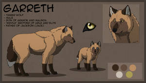 Garreth Character Sheet 2011 by SabraeTrash