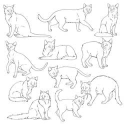 Free Cat Lines 1 by SabraeTrash