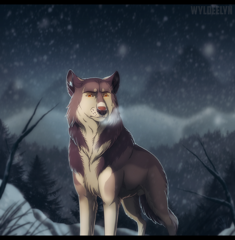 Gift Art - Winter's Chill by WyldeElyn