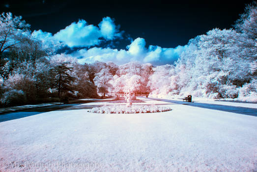 Aberdeen: Seaton Park Infra-red