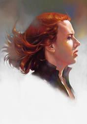 Avengers Black widow by lshgsk