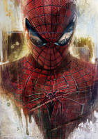 The Amazing Spiderman by lshgsk