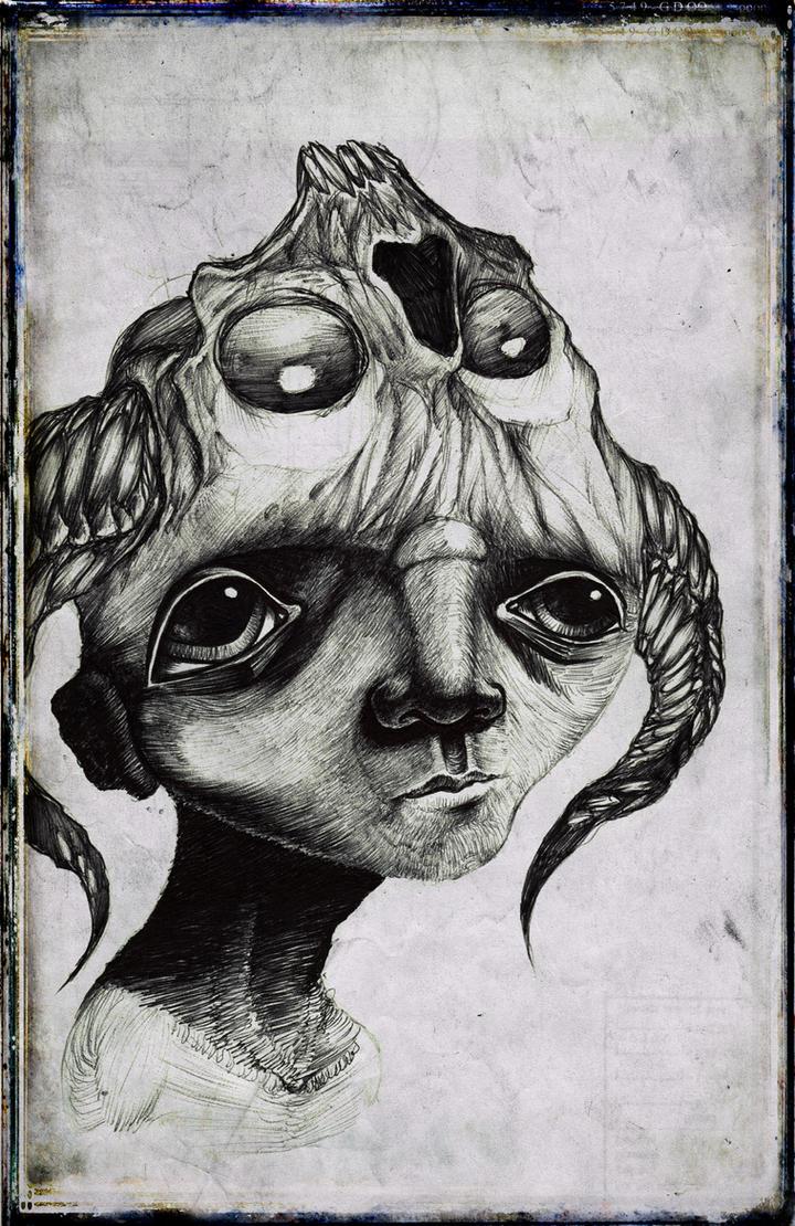 Skullcap by ShawnCoss