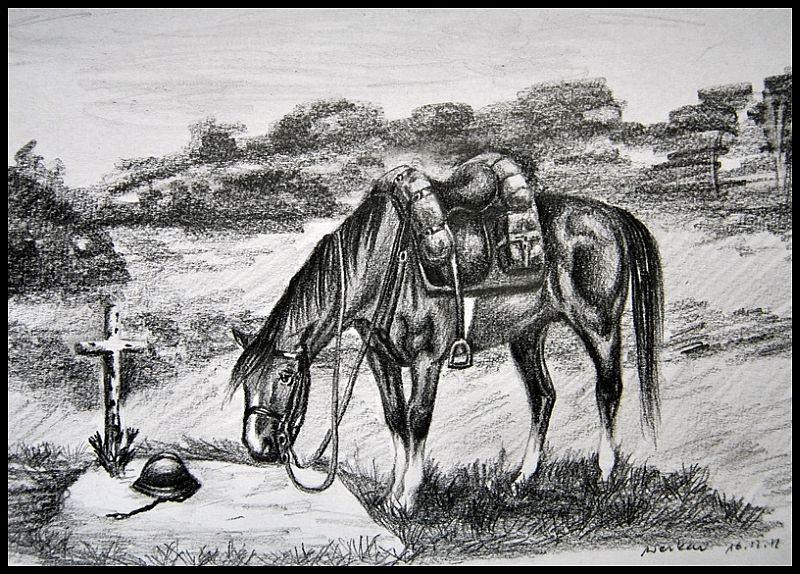 moj druh moj kon by Werkau
