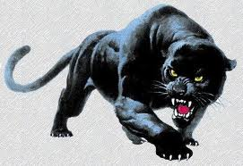 Panther3 by Enterprisecv-6