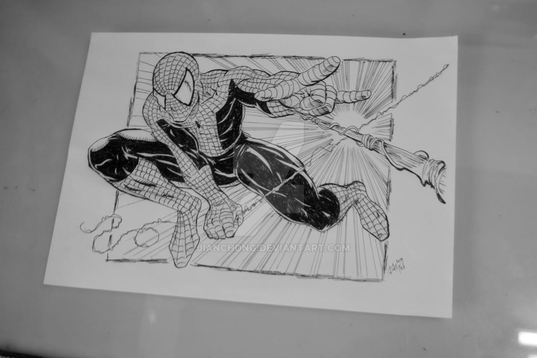 Spiderman by jianchong