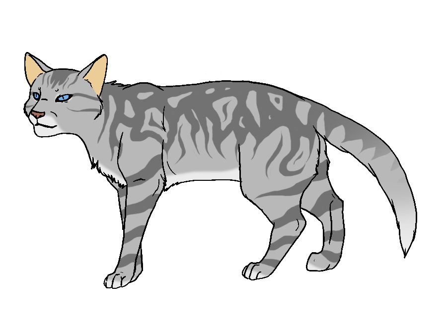 Grey Cat With Black Stripes And Green Eyes