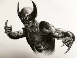 Wolverine Charcoal by ninjason57