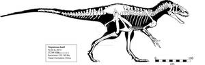 Yutyrannus huali Skeleton
