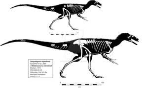 Tanycolagreus (Stokesosaurus?) Skeleton