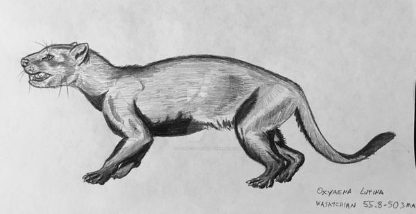 Oxyaena lupina--Wasatchian predator by Franz-Josef73