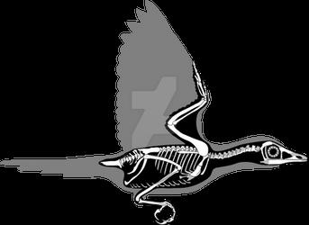Sinornis santensis skeletal diagram