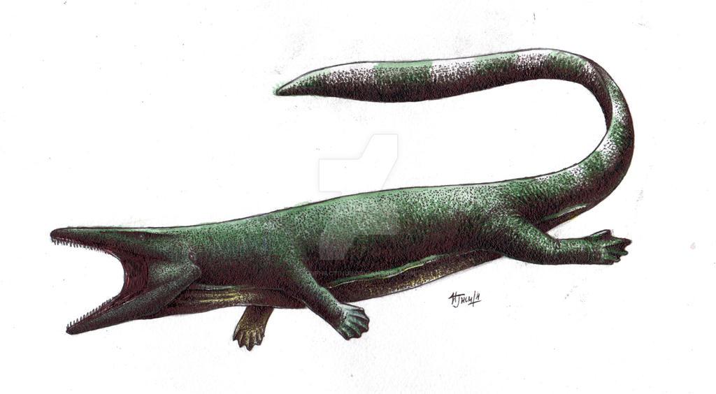 Pannoniasaurus inexpectatus by Xiphactinus