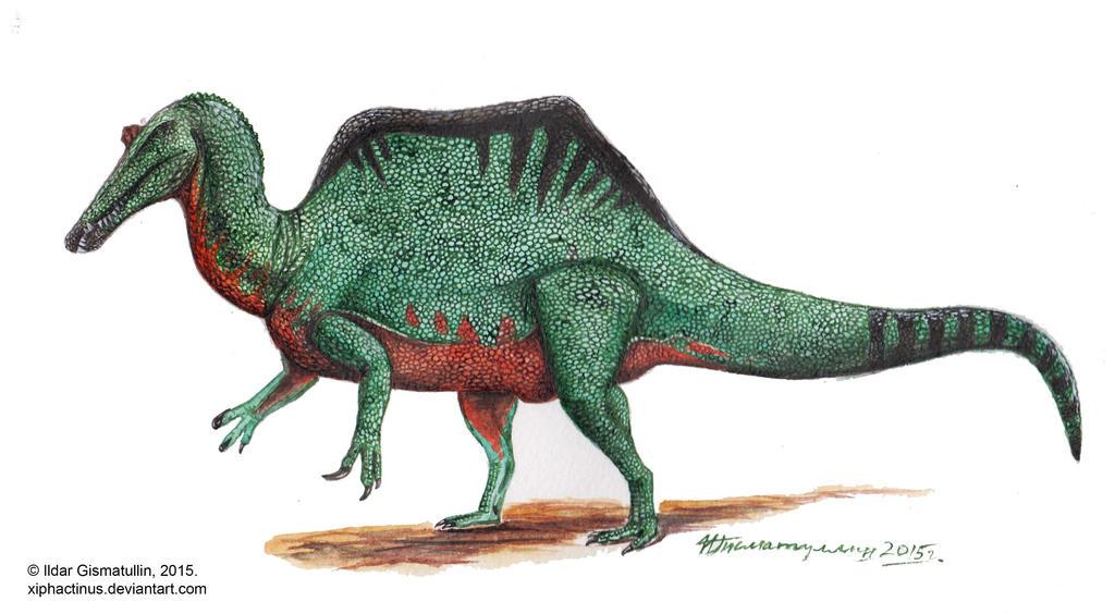 http://fc07.deviantart.net/fs70/i/2015/024/9/b/spinosaurus_aegyptiacus_v2_by_xiphactinus-d8f6efv.jpg