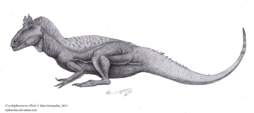 http://img03.deviantart.net/5469/i/2015/094/2/4/cryolophosaurus_ellioti_by_xiphactinus-d8oclob.jpg