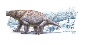 Pareiasaurus serridens