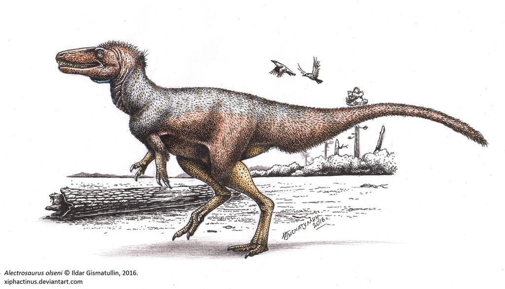 http://img09.deviantart.net/5c32/i/2016/230/8/5/alectrosaurus_olseni_by_xiphactinus-dadmpkn.jpg