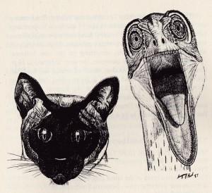 Xiphactinus's Profile Picture