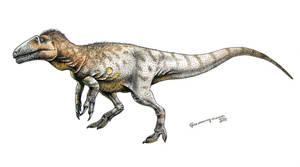 Neovenator