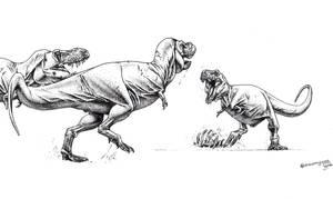 T. rex confrontation