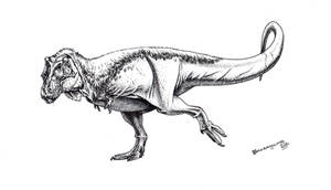 Feathered T. rex