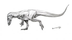 Ostafrikasaurus crassiserratus