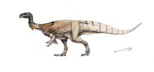 Plateosaurus engelhardti colored