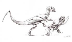 Dilophosaurus fight