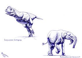 Paleostream drawings 27.06.2020
