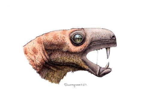Nothogomphodon danilovi remake