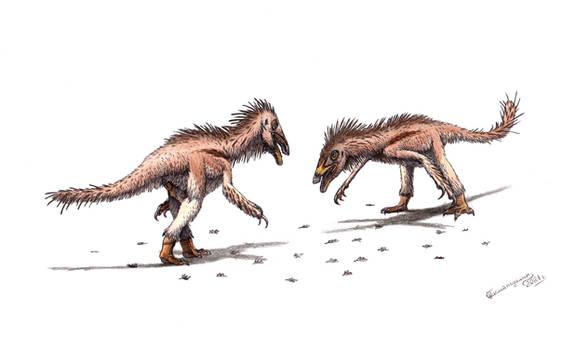 Beipiaosaurus inexpectus confrontation