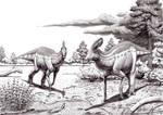 Tlatolophus galorum walking